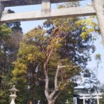 大阪府和泉市の御朱印をゲットできる神社一覧